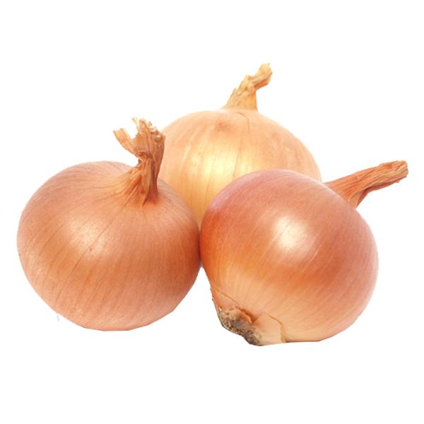 Onions (Medium) 10 Lb