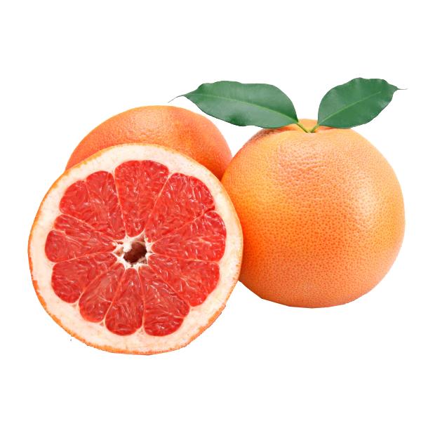 Grapefruit 3 Pack